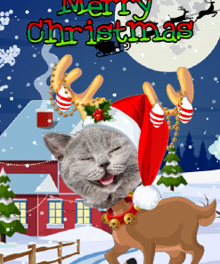 novelty_reindeer_cat_xmas_card